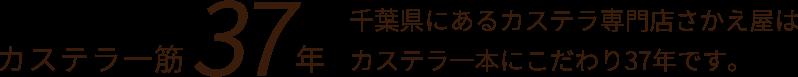千葉県にあるカステラ専門店さかえ屋はカステラ一本にこだわり37年です。